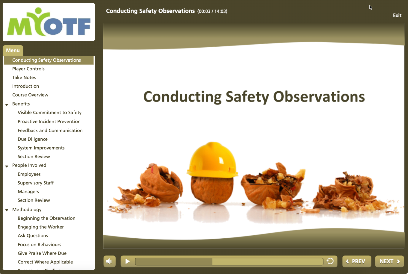Conducting Safety Observations